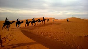4 Day Luxury Nile Cruise