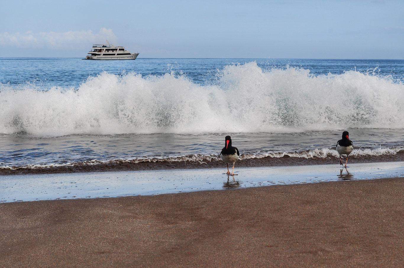 Espumilla-Beach-136