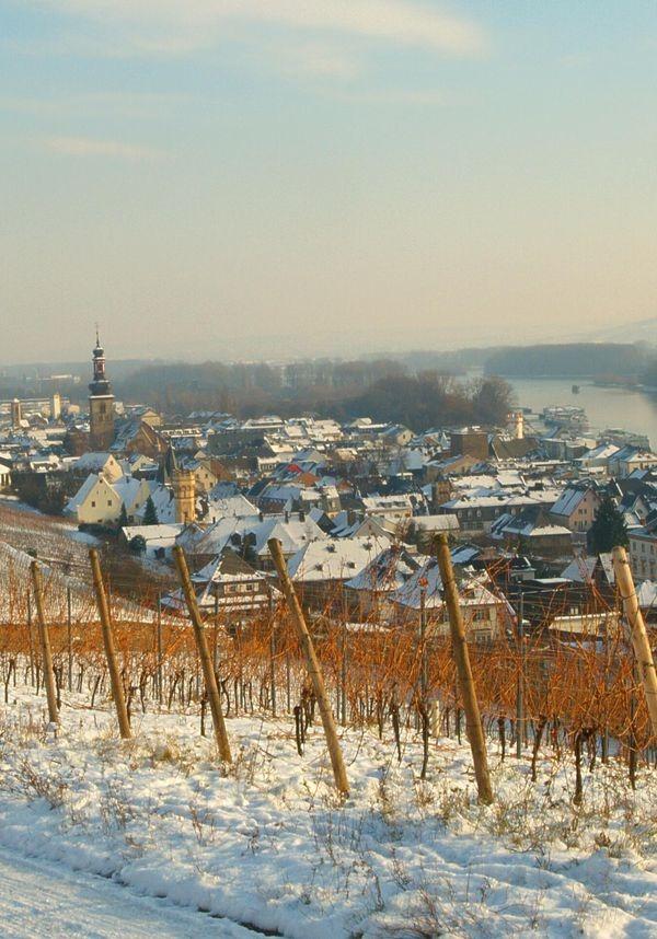 csm_Ruedesheim_Winter_01_ec7cea7