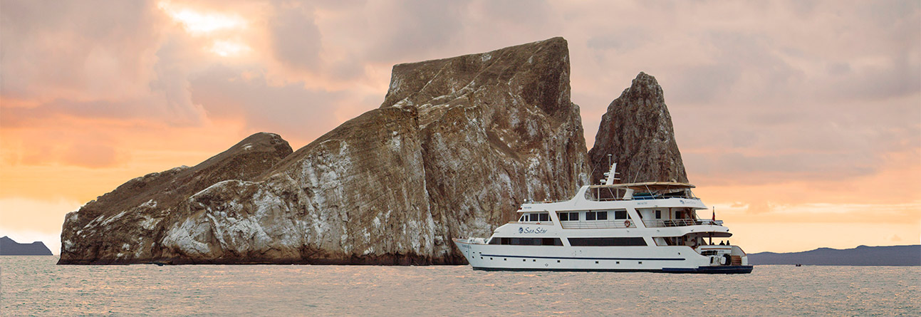 sea-star-journey-galapagos-cruise