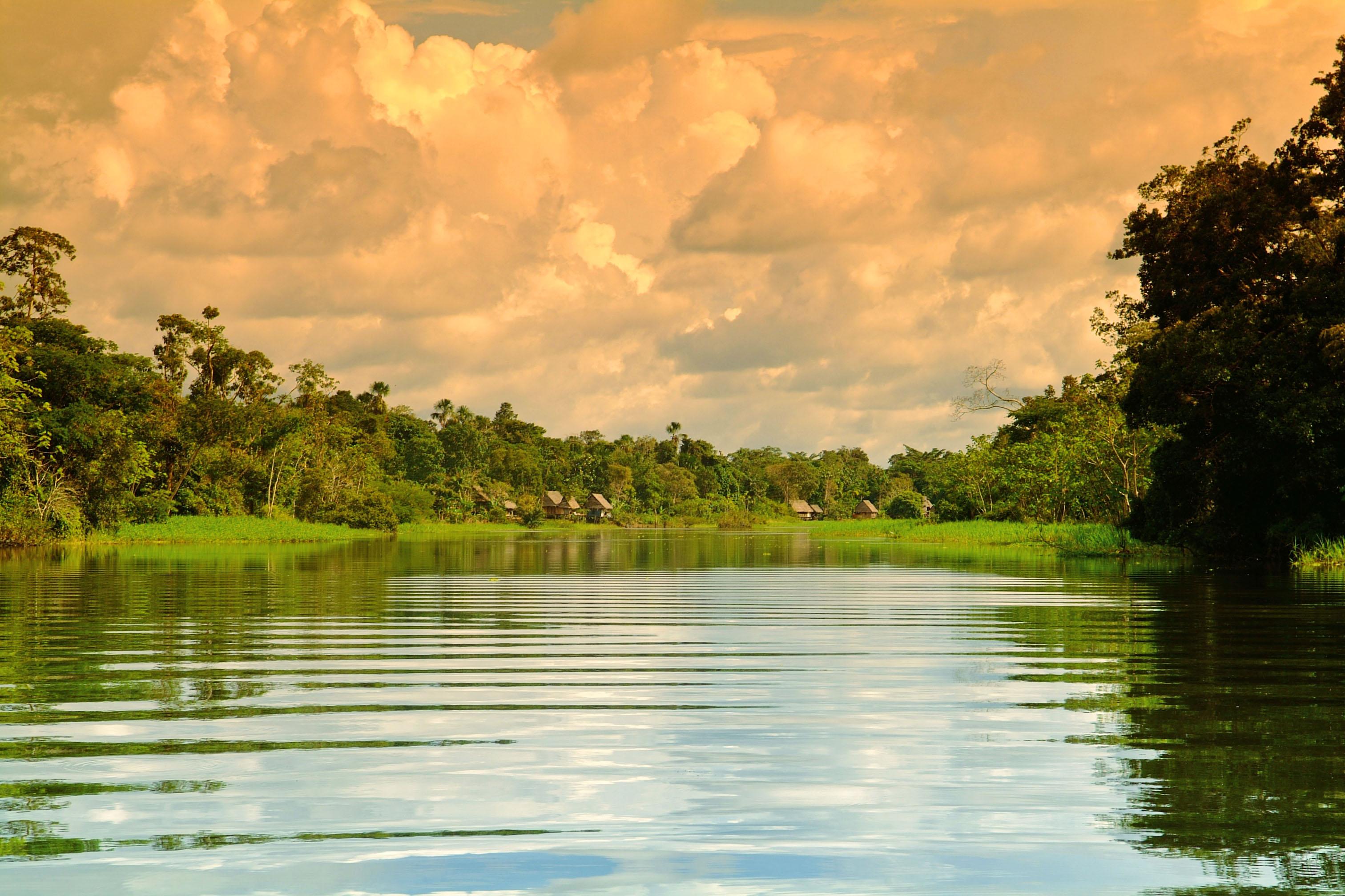 Amazon Cruise Peru Aria Amazon 7 Nights River Cruise - Low Water