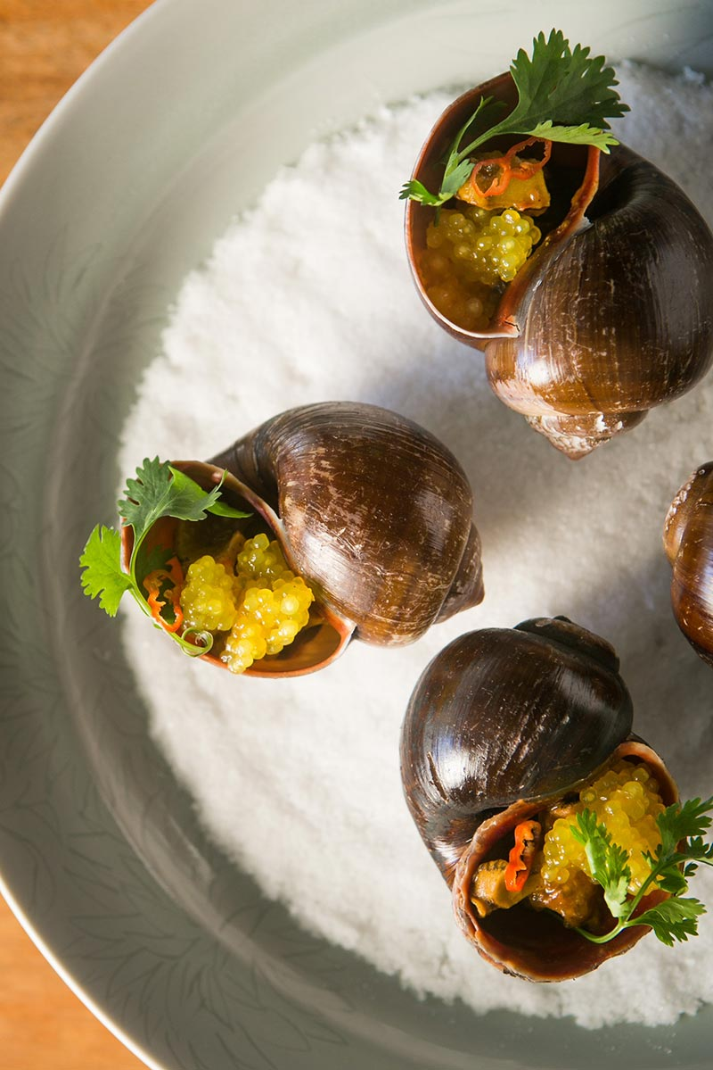 Spicy-River-Snails-with-Tapioca-and-Turmeric-Sofrito