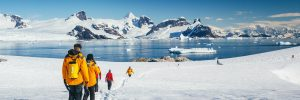 Best Cruise to Antarctica