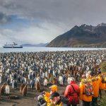 Nature Cruises