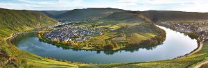 Rhine and Mosel Vineyards