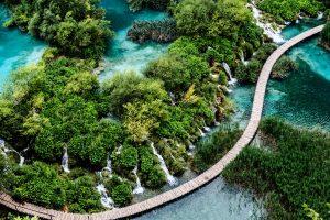 Adriatic Cruises