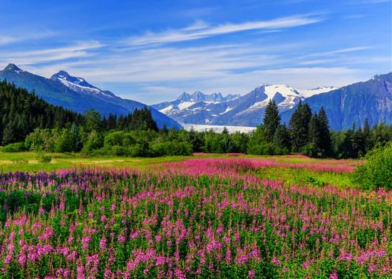 South Alaska Cruise - American Cruise Lines Certified