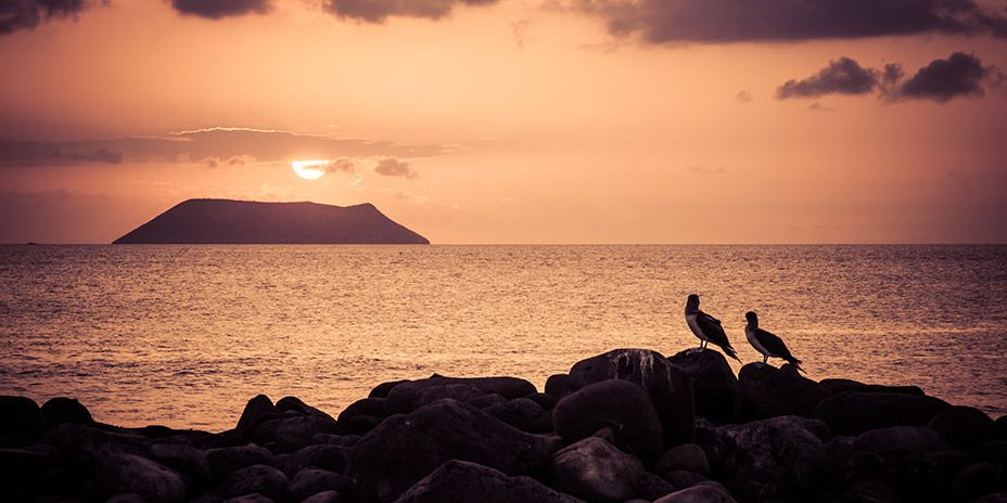 13-Galapagos-Seaman-Journey-North-Seymour-Island-Ecuador