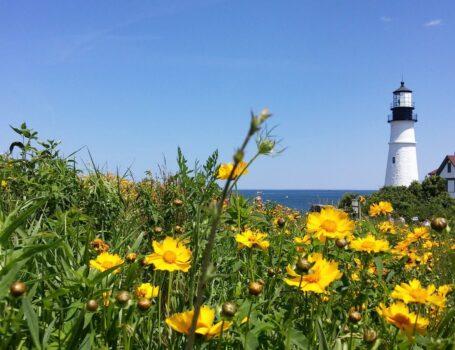 New England Coast Cruise - New England Coast Cruise