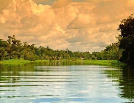 Best Amazon River Cruise - Aria Amazon 7 Nights River Cruise - High Water